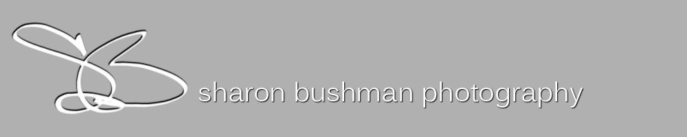 Sharon Bushman Photography Blog logo